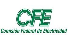 Comision Federal De Electricidad